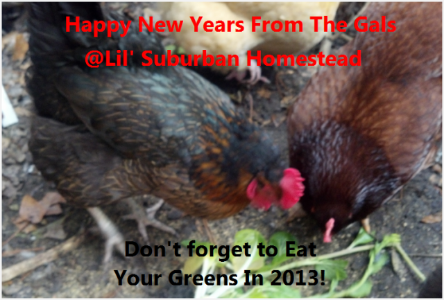 Happy New Years From The Gals At Lil' Suburban Homestead