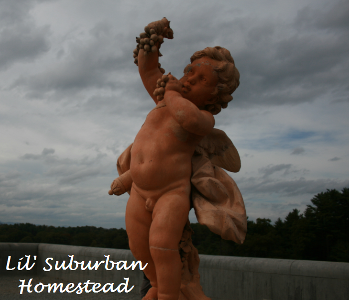biltmore statue