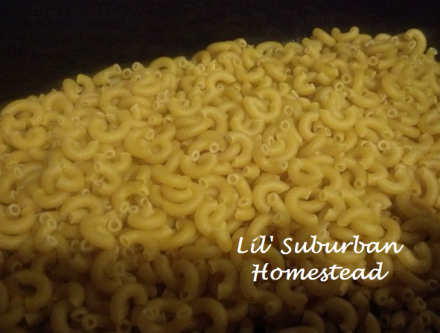 layer the elbow noodles in the crock pot